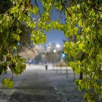 Скоро зима... :: Сергей Щербатюк