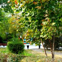 Осень в городе...3 :: Тамара (st.tamara)
