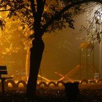 тихий вечер во дворе :: алексей сергиенко