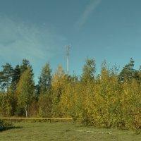 октябрь, солнце, городские задворки... :: Михаил Жуковский