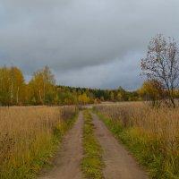 Ненастный день октября :: Милешкин Владимир Алексеевич