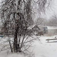 и опять чёрно-белое фото Зимы...:) :: Милла Корн