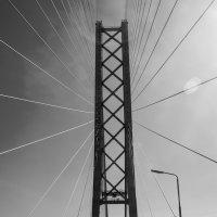 На мосту :: Алексей Обухов