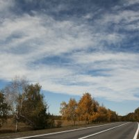 дорога в осень... :: Tatiana Florinzza