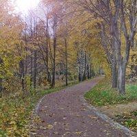 Осень :: Алексей Михалев