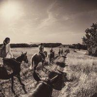 Off Road :: Serj Veter