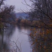 Дождь осенний — моросящий... :: Альмира Юсупова