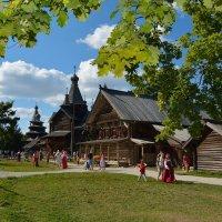 Прогулки по Витославлицам 24 :: Константин Жирнов