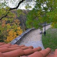 Осенний парк :: Ольга