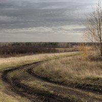 Поздняя осень в Российском Черноземье. :: Андрей Романов
