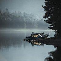 Ночной пейзаж :: Ольга Овчинникова