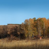 """Осень, осень"".... :: георгий  петькун"