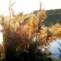 Осень.Утро.Река.Туман. :: Юрий Захаров