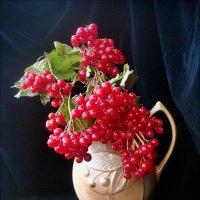 Калина в подарок :: Нина Корешкова