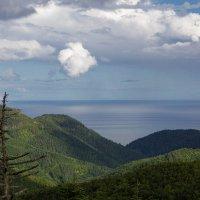 выше облаков :: Ирина Пантелеева