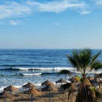 пляж :: Julia C.