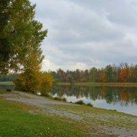 ...Дыханьем осени наполнены все дни!!! Осенний джаз звучит без устали, надрывно... :: Galina Dzubina