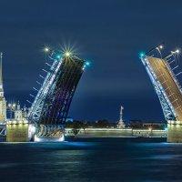 Дворцовый мост :: Табаско Перчик