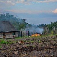 Урожай :: Владимир Безгрешнов