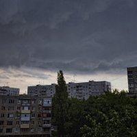Перед дождём :: Татьяна Кретова