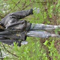 Ужасы нашего леса :: Андрей Заломленков