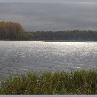 Новаоозеро :: Vadim WadimS67