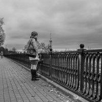 Серая осень :: Владимир Голиков