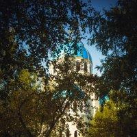 Храм Живоначальной Троицы на Борисовских прудах. :: Евгения Назарова
