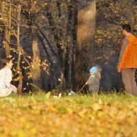 Облетает листва... Рыжий в парке ковер настилая... :: Марина Юдинских