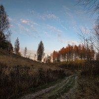 "Из серии"" Осенний вечер в деревне"" :: Тамара Цилиакус"