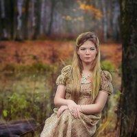 Осень, осень, лес остыл и листья сбросил..... :: Виктор Седов