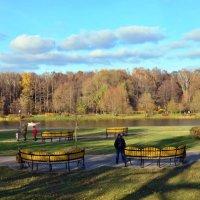 Панорама Терлецкого парка. :: Oleg4618 Шутченко