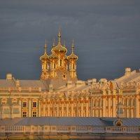 Купола Екатерининского дворца :: Наталья Левина