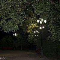 Фонари в Кремлевском парке у памятника Рахманинову. :: Виктор Орехов