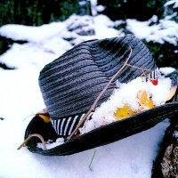 В целом пикник удался... :: Александр Ковальчук