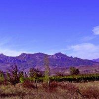 Голубые горы :: Виктор Шандыбин