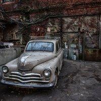 Думаете, смысл жизни в том, чтобы мчаться? :: Ирина Данилова