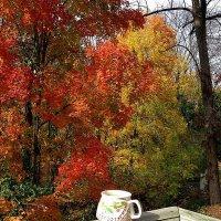 Чашечка кофе на фоне осени... :: Елена