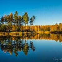 Осенняя тишина. :: Aleksandr Papkov
