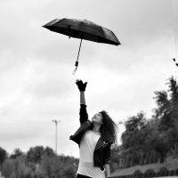 унесенный ветром :: Евгений Стрелков