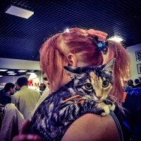 На выставке кошек III :: Alexei Kopeliovich