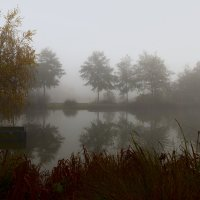 Туманный Альбион: Туман редкость в Лондоне :: Дмитрий Сорокин