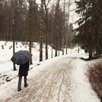 Зима. Павловск :: Christine Chuprakova