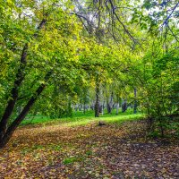 Осень в старом парке... :: Rafael