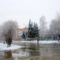 Выпал снег. :: Мила Бовкун