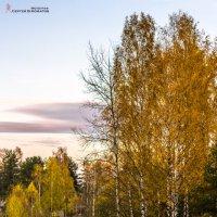 Осень в Ненимяках :: Сергей В. Комаров