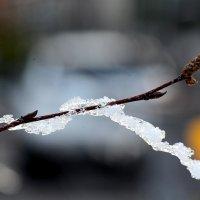 Освобождение от ледяного плена :: Асылбек Айманов
