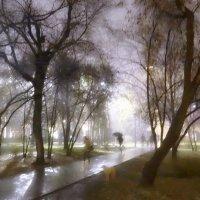 Дождь в парке :: Игорь