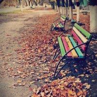 Одинокая осень :: Не волшебница) )