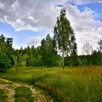 Русские дороги :: Мария Богуславская